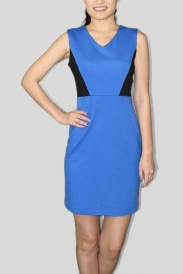 Blue Petite Dress, $108